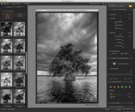 The Silver Efex 2 workspace